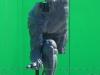 statue21