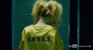 "Harley Quinn w ""Arrow""?"