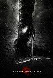 Plakat z Catwoman