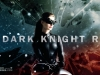 Baner z Catwoman