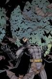 Batman Inc #12
